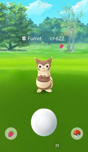 new Encounter Screen shows when you have an active Berry
